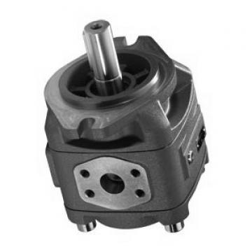 REXROTH PVQ41-1X/122-036RA15DDMC PVV pompe à palettes