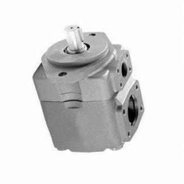 REXROTH PVQ4-1X/113RA-15DMC PVV pompe à palettes