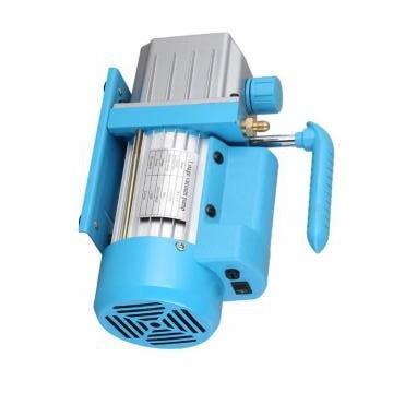 Vickers PV040R1K1T1NGCZ+PVAC2MCMNSJW35 PV 196 pompe à piston