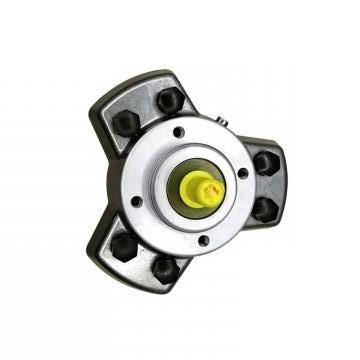 Vickers PV032R9K1T1NGLC4545K0130 PV 196 pompe à piston