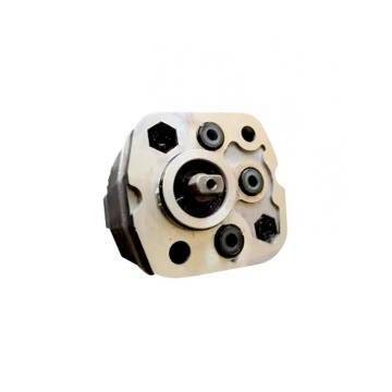 Vickers PV040R9K1KJNMFCK0021+PV032R9L1 PV 196 pompe à piston