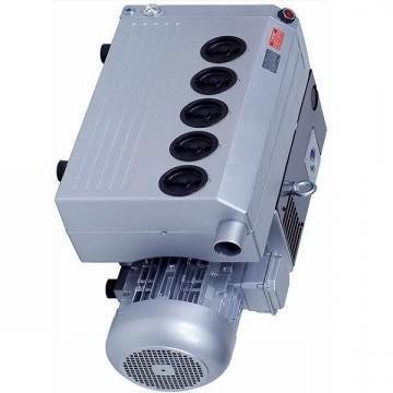 Vickers PV040R1K1T1NUPG+PVAPVV21N20 PV 196 pompe à piston