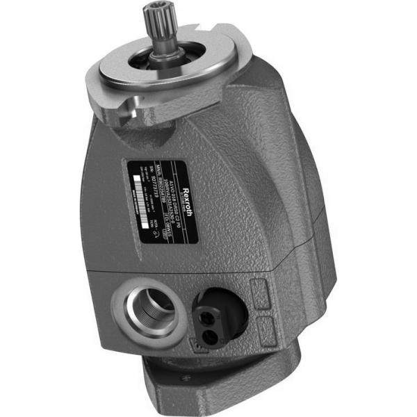 REXROTH R901081361 PVV21-1X/055-018RA15DDMB PVV pompe à palettes #1 image