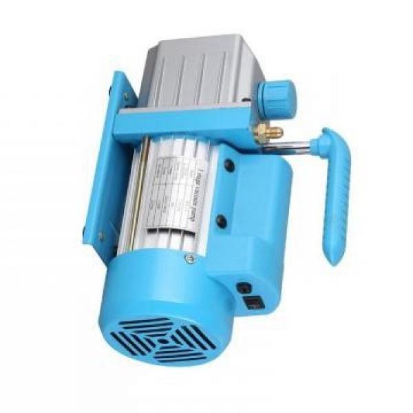 Vickers PV040R1K1T1NMLC4545 PV 196 pompe à piston #2 image