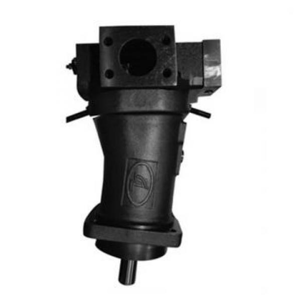 Vickers PV032R9K1JHNMFCK0021+PV016R9L1 PV 196 pompe à piston #2 image