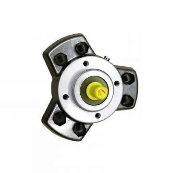 Vickers PV032R9K1JHNMFC4545K0021 PV 196 pompe à piston #1 image