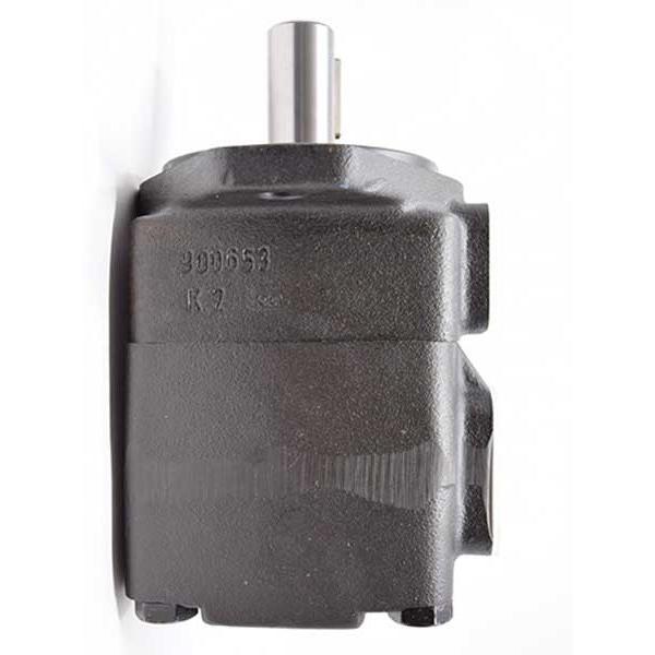 Vickers V2020 1F11B11B 1AA 30 pompe à palettes #2 image