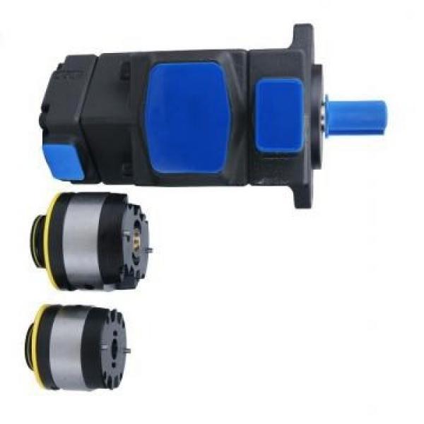 Vickers PV040R1E1CDWUPR+PV040R1E1T1WUP PV 196 pompe à piston #2 image