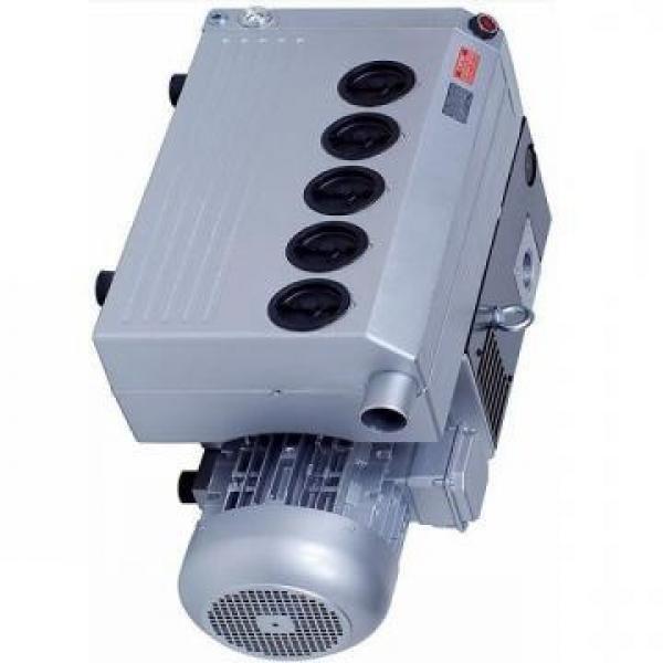 Vickers PV032R9K1JHNMFCK0021+PV016R9L1 PV 196 pompe à piston #3 image